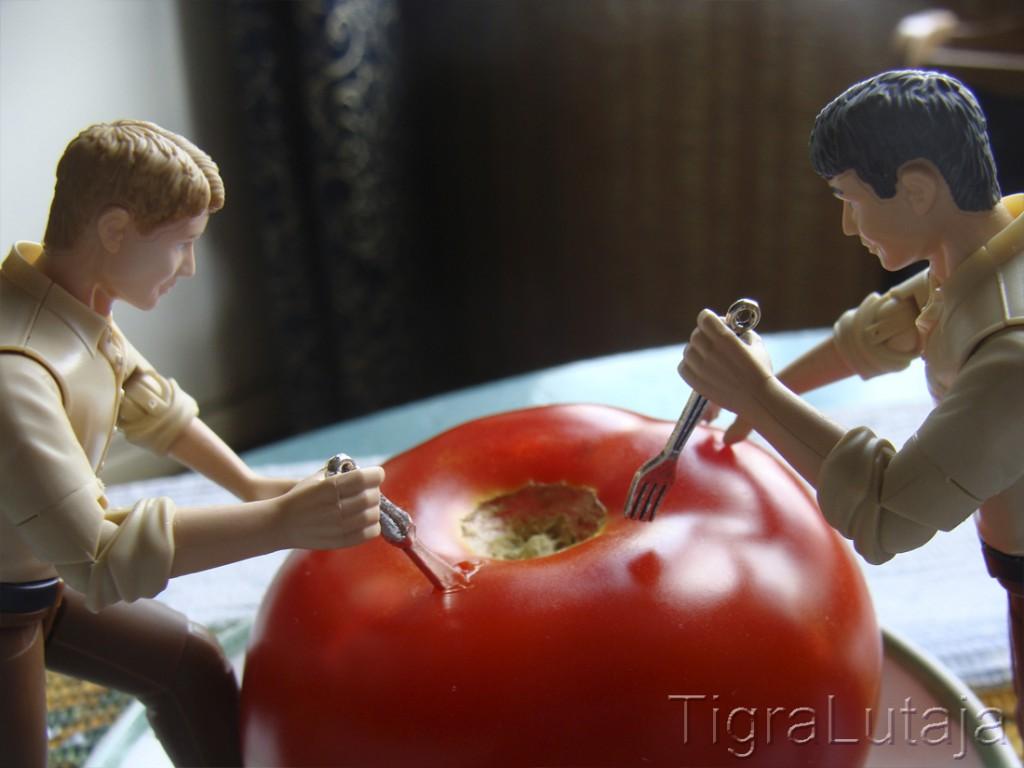 ося и киса помидор