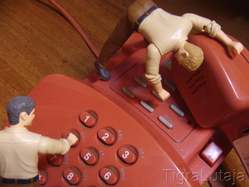 ося и киса проверяют телефонную связь