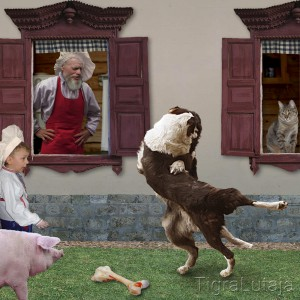 "Басня Крылова ""Собачья дружба"""