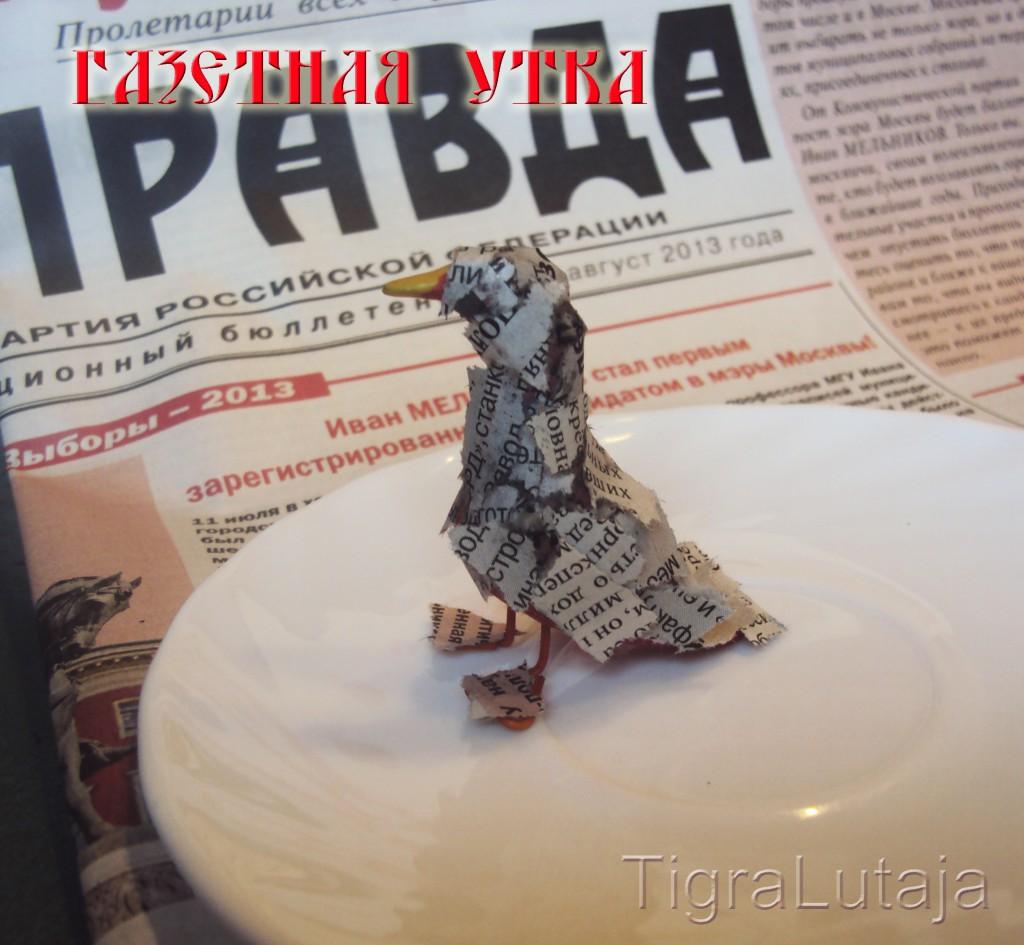 газетная утка