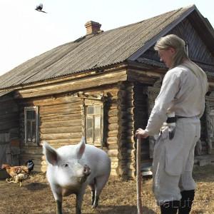 """Басня Крылова """"Свинья"""""""